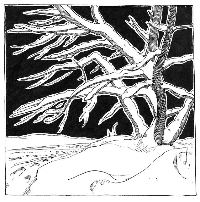 Strange tree by leasel