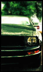 Mister Mustang by CoffeeBum