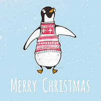 Christmas Card - Penguin