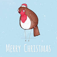 Christmas Card - Robin