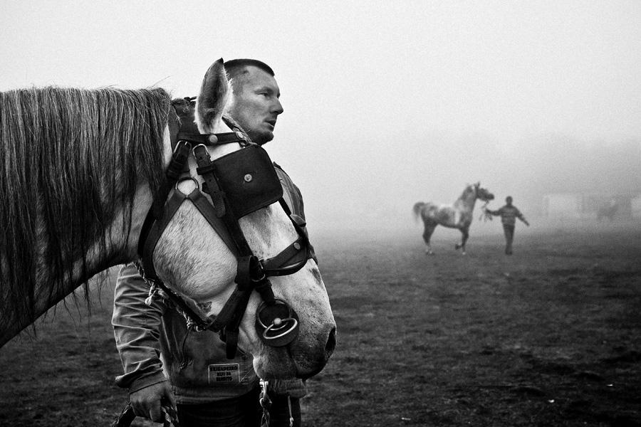 Horse traders II by vulezvrk