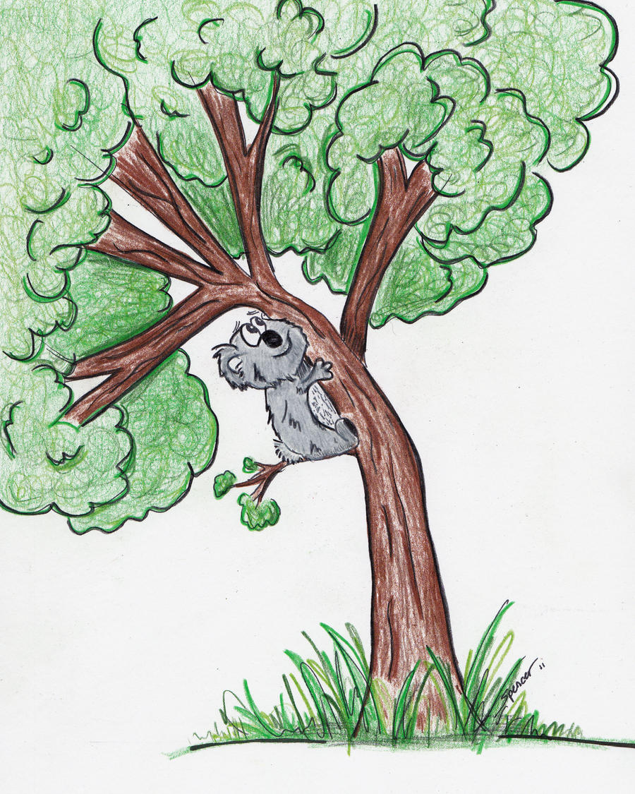 cartoon koala by bnspencer on deviantart