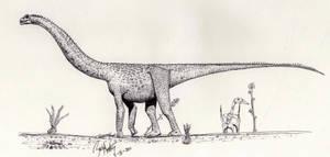 Futalognkosaurus dukei by palaeozoologist