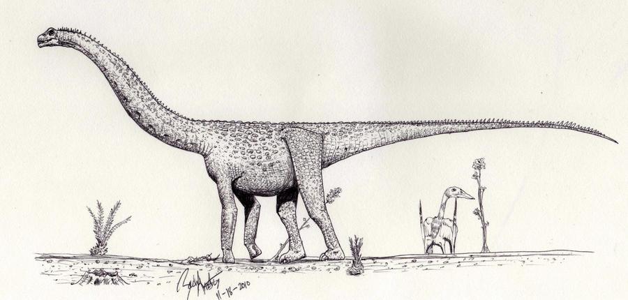 Futalognkosaurus dukei