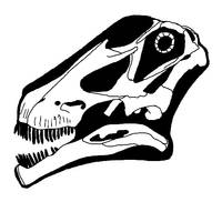 Tapuiasaurus skull by palaeozoologist