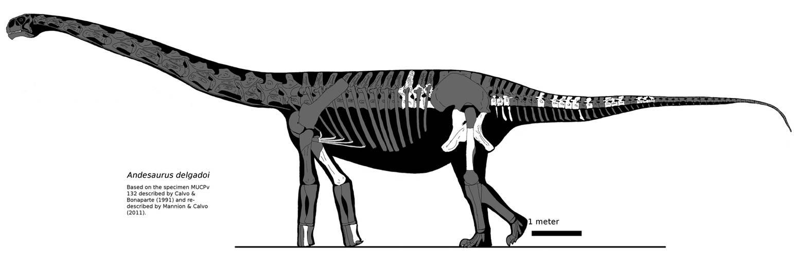 Andesaurus new version