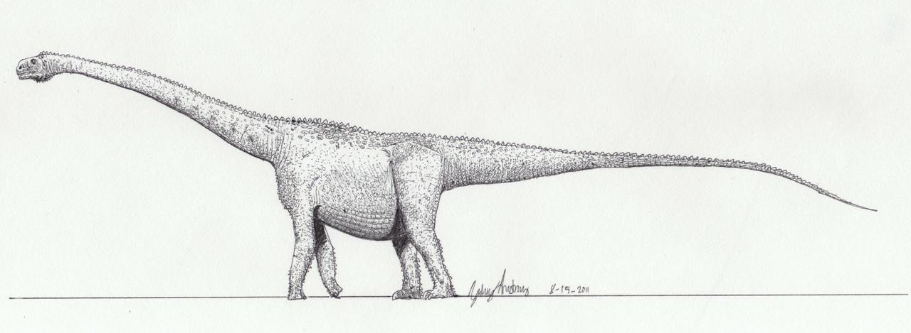Malawisaurus life drawing by palaeozoologist