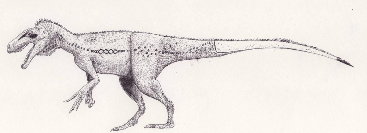Marshosaurus _again_ by palaeozoologist