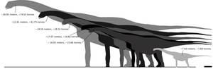 Alamosaurus sizes