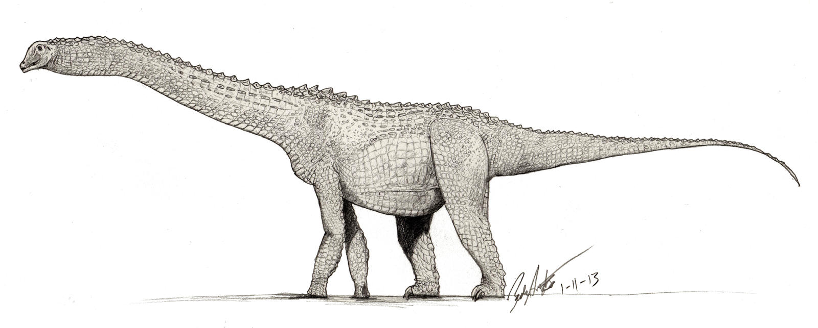 Alamosaurus drawing with croc scales