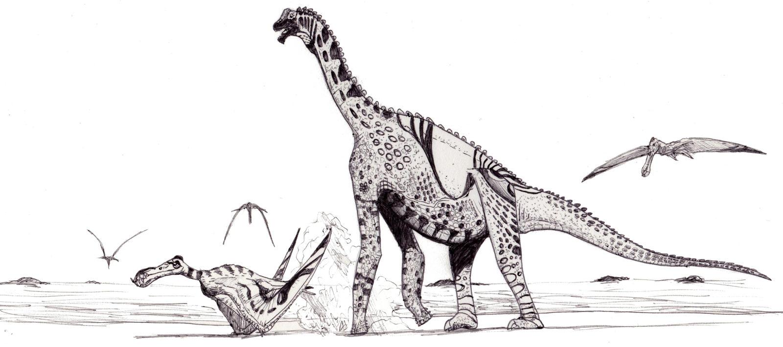Atlasaurus drawing
