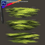 Concept Brushes Digital Art Painting Grass Foliage