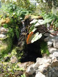 Flower by Waterfall by artnovation