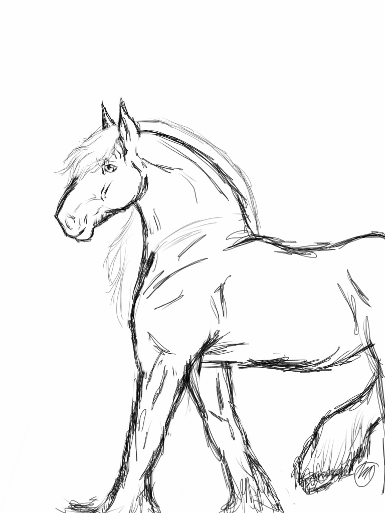 Rearing horse coloring pages - crazywidow.info