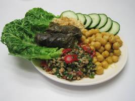 Middle Eastern lunch by pradlee