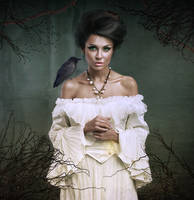Lady of the Ravens by Shann2j
