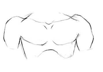 The Male Upper Chest by DigitalBunnyHops