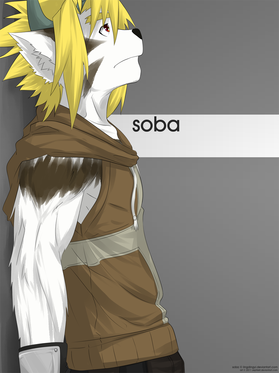 Soba by zephleit