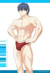 PeCS Swimsuit - Skar