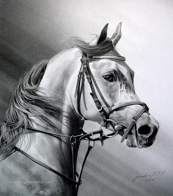 ARABIAN BEAUTY by MiroDesign