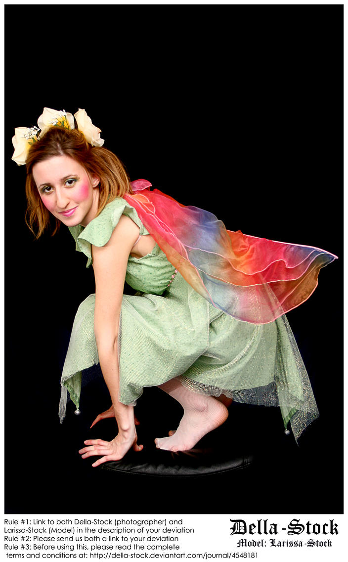Fraulein Fairy.6 by Della-Stock