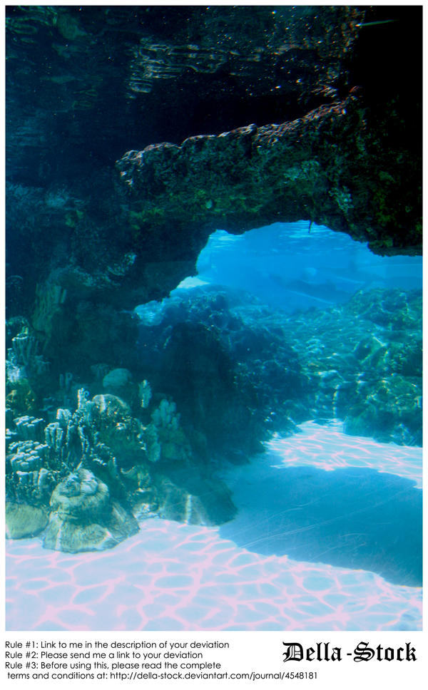 Sea World: Dolphin Cove.6 by Della-Stock