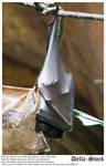 Fruit Bat Curled Up