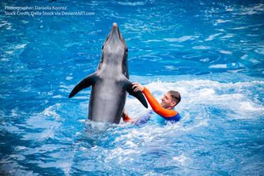 Dancing Dolphin.2 by Della-Stock