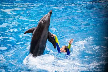 Dancing Dolphin by Della-Stock