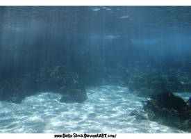 Under The Sea-The Ocean World by Della-Stock