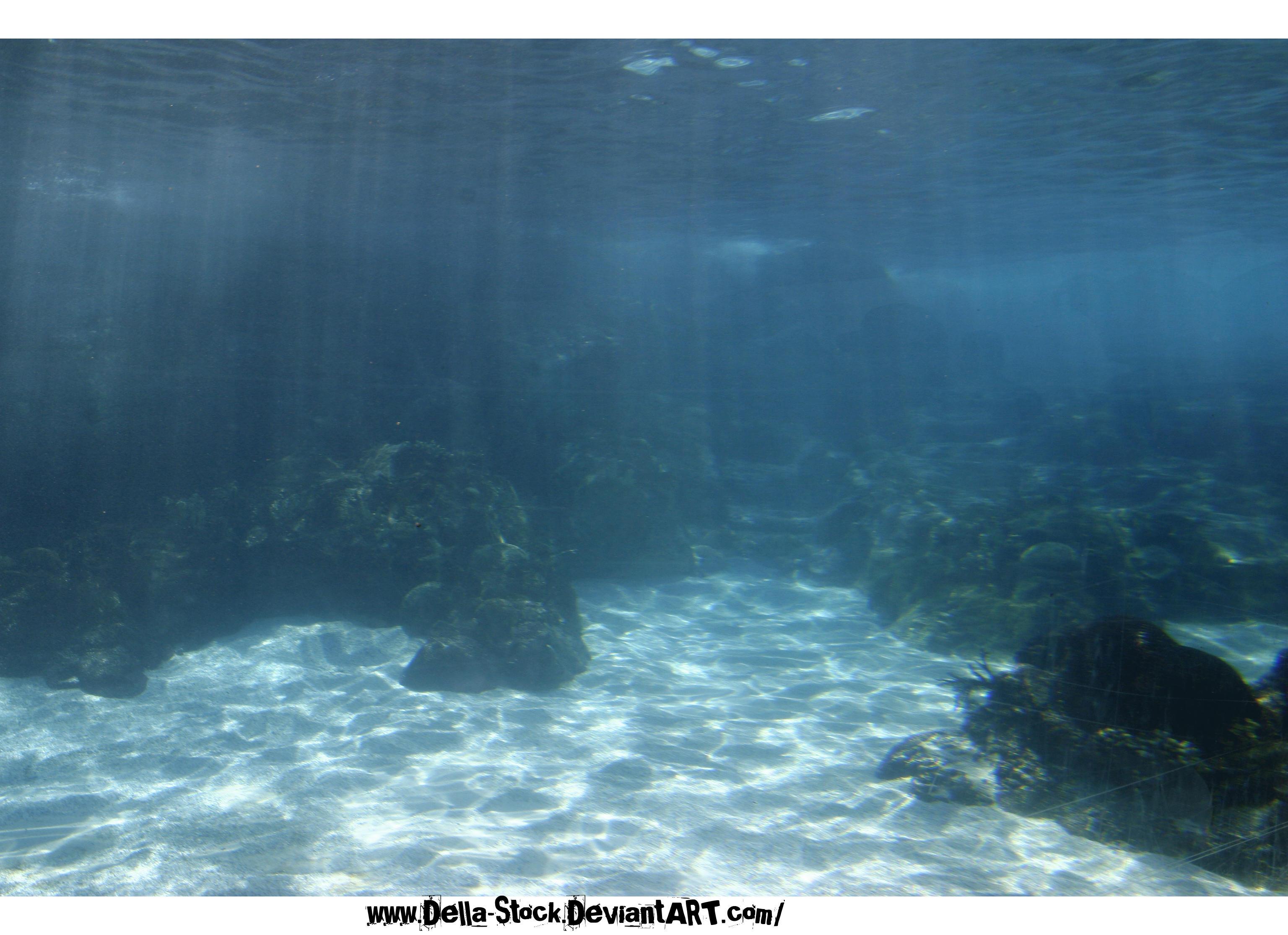 Ellasoën par Ever Light. Under_The_Sea_The_Ocean_World_by_Della_Stock