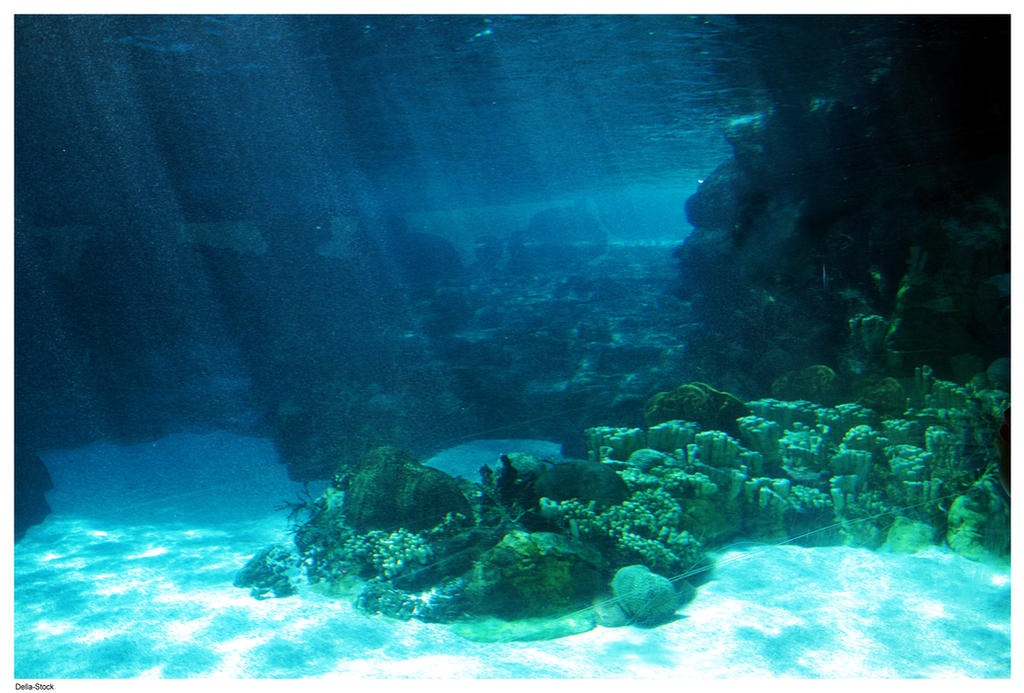 Underwater Ocean Floor Light