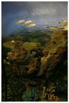 Under Water Reef n Fish