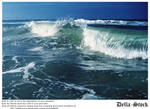 Ponce Inlet Waves