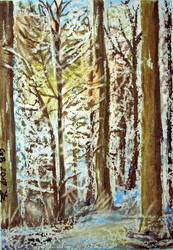 Winter forest (3) by czarownicazbagien