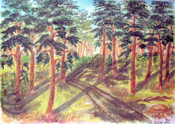 Masuria 8 - Pine Forest in the Sun - improved by czarownicazbagien
