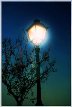 Light in the sky Fantasy