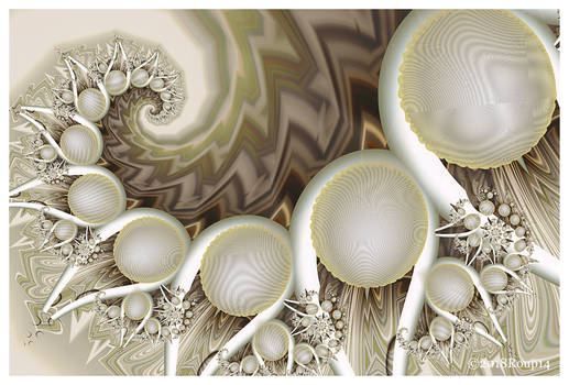 Wave of Sea shells
