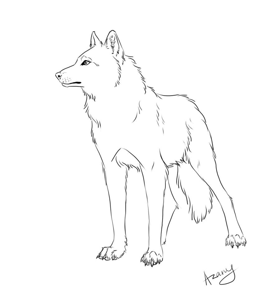 Line Drawing Wolf : Wolf line art by azany on deviantart