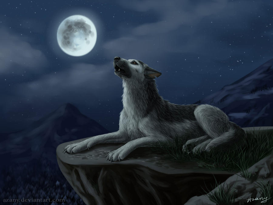 A place to put pictures Abrek__night_howl_by_azany-d487xov