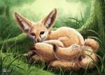 Fenech-kitsune
