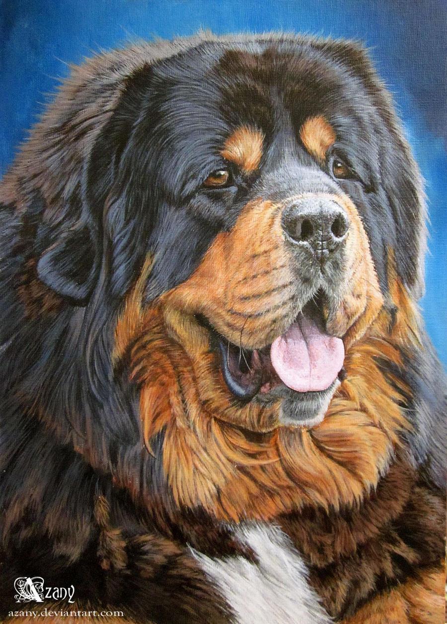 Tibetian mastiff by Azany