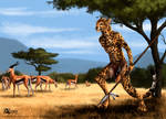 Cheetah-hunter