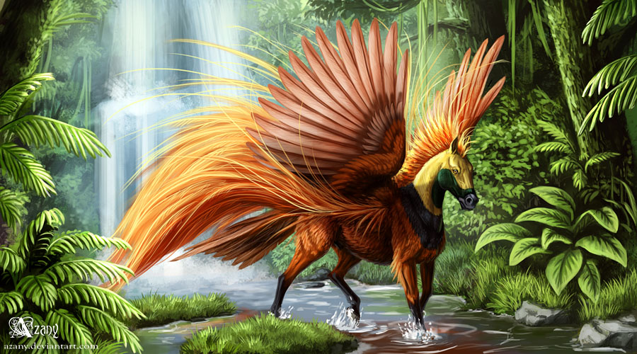 Image Result For Tropical Bird Coloring