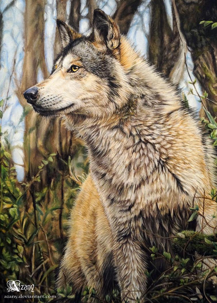 Wild Stark by Azany