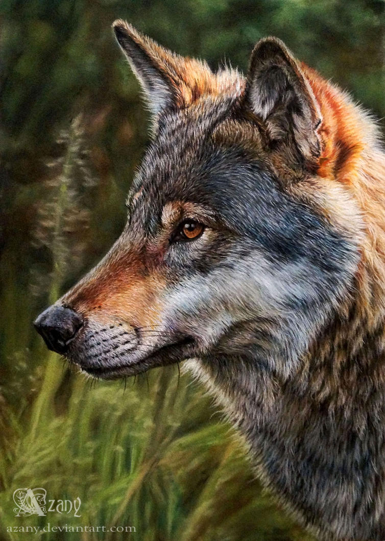 Oil Painting Of Wolves