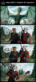 Skyrim bros: Bro don't throw in trouble