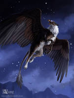 Commission: Griffin at night by Azany