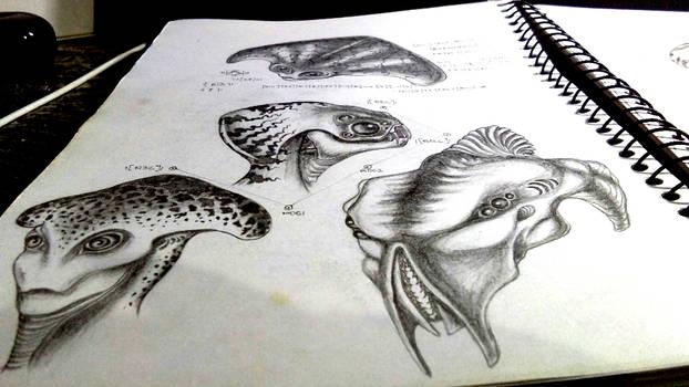 Creature Head concepts