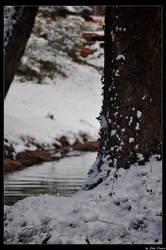 Winter by JohnDamen